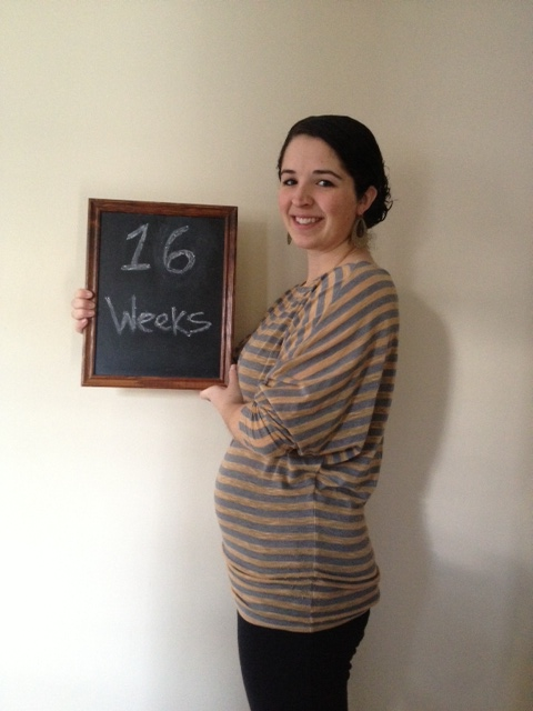 16 weeks, baby is the size of an avocado!