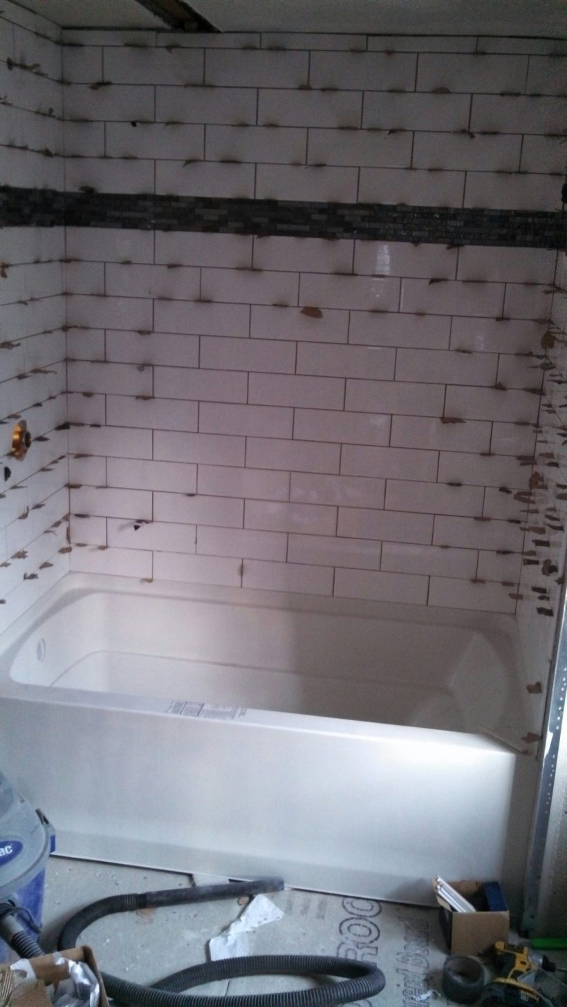 Bathroom Remodel (2 Weeks In)